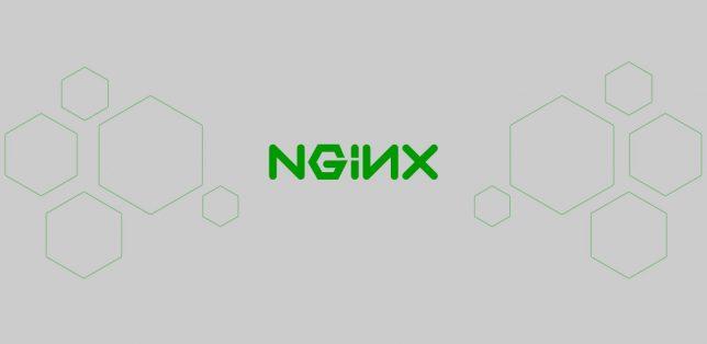Pengertian Nginx adalah